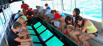 Great Barrier Reef Cruise to Reef Magic Cruises Pontoon Thumbnail 3