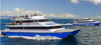 Great Barrier Reef Cruise to Reef Magic Cruises Pontoon Thumbnail 6