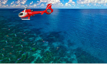 Great Barrier Reef Dive and Snorkel Cruise to 2 Reef Locations Thumbnail 4