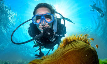 Great Barrier Reef Dive and Snorkel Cruise to 2 Reef Locations Thumbnail 1