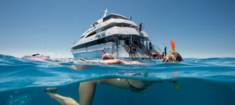 Great Barrier Reef Dive and Snorkel Cruise to 2 Reef Locations Thumbnail 3