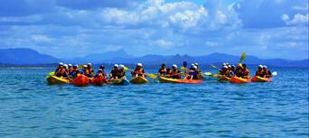 Byron Bay Sea Kayak with Dolphins and Turtles Thumbnail 4