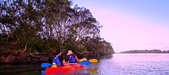 Byron Bay Sea Kayak with Dolphins and Turtles Thumbnail 6