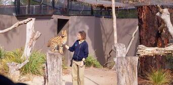 Werribee Open Range Zoo Entry Thumbnail 4
