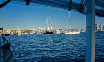 QuackrDuck Gold Coast City Tour and River Cruise Thumbnail 3