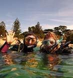 Melbourne Diving
