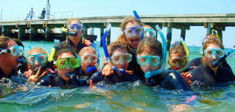 Mornington Peninsula Weedy Sea Dragons Snorkel Tour Thumbnail 1