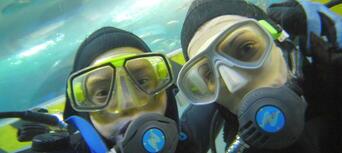 Melbourne Aquarium Shark Dive Xtreme Thumbnail 3