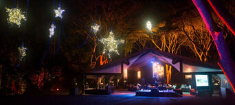 Flames of the Forest Aboriginal Cultural Dining Experience Thumbnail 6