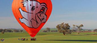 Port Douglas Classic Hot Air Balloon Flight Thumbnail 2