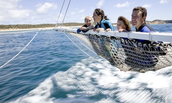 Dolphin and Seal Swim Tour in Queenscliff Thumbnail 2