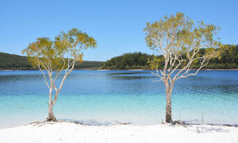 Fraser Island Day Tour from Hervey Bay Thumbnail 5