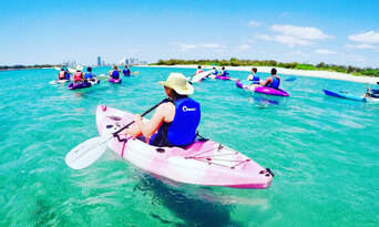 Gold Coast Dolphin and Stradbroke Island Kayaking Tour Thumbnail 4