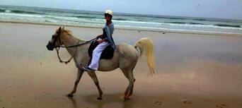 Horse Riding Byron Bay Beach Ride Thumbnail 2