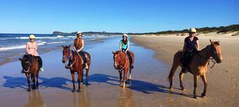 Horse Riding Byron Bay Beach Ride Thumbnail 3