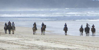 Horse Riding Byron Bay Beach Ride Thumbnail 1