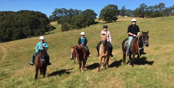Horse Riding Byron Bay Trail Ride Thumbnail 1