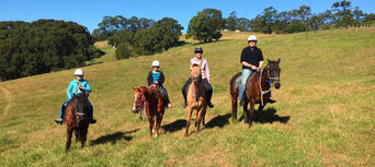 Horse Riding Byron Bay Pony Ride Thumbnail 2