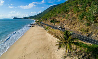 1 Day Daintree Rainforest, Cape Tribulation and Bloomfield Track Tour Thumbnail 3