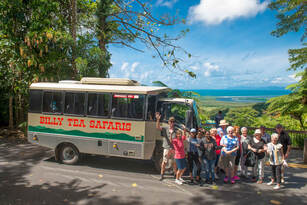 1 Day Daintree Rainforest, Cape Tribulation and Bloomfield Track Tour Thumbnail 4