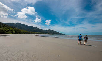 1 Day Daintree Rainforest, Cape Tribulation and Bloomfield Track Tour Thumbnail 6