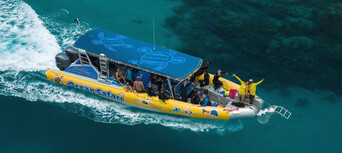 Great Barrier Reef Snorkel Trip from Cape Tribulation Thumbnail 1