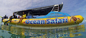 Great Barrier Reef Snorkel Trip from Cape Tribulation Thumbnail 3