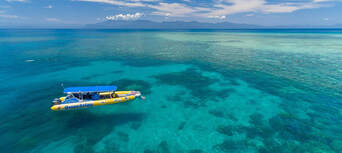 Great Barrier Reef Snorkel Trip from Cape Tribulation Thumbnail 4