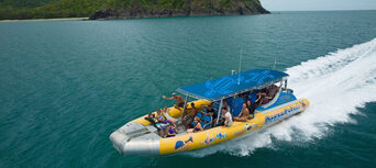 Great Barrier Reef Snorkel Trip from Cape Tribulation Thumbnail 6