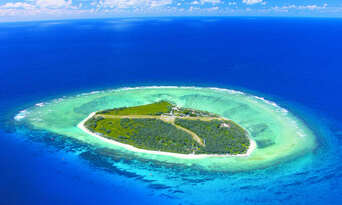 Lady Elliot Island Day Trip from Hervey Bay including Flights Thumbnail 3