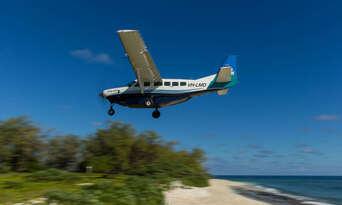 Lady Elliot Island Day Trip from Hervey Bay including Flights Thumbnail 4