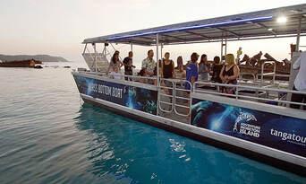 Tangalooma Island Resort Day Tour with Wild Dolphin Feeding & Transfers Thumbnail 5