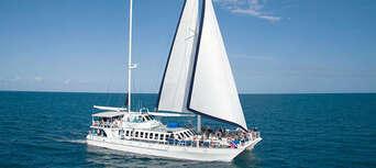 Port Douglas to Low Isles Full Day Sailing Cruise Thumbnail 5