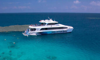 Port Douglas Premium Great Barrier Reef Cruise to 3 Reef Locations Thumbnail 2