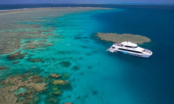Port Douglas Premium Great Barrier Reef Cruise to 3 Reef Locations Thumbnail 6