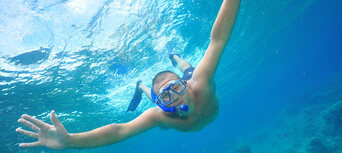 Green Island Full Day Trip + Snorkelling OR Glass Bottom Boat & Island Activities Thumbnail 5