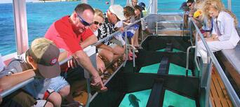 Green Island Full Day Trip + Snorkelling & Glass Bottom Boat Thumbnail 3