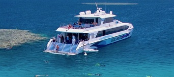 Premium Great Barrier Reef Cruise to 3 Reef Locations Thumbnail 5