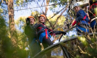Treetops Adventure Daytime Tours Thumbnail 2