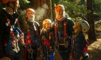 Treetops Adventure Daytime Tours Thumbnail 6