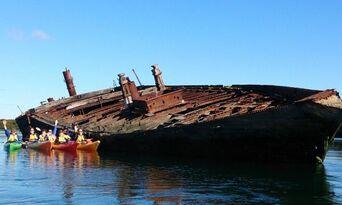 Dolphin Sanctuary & Ships Graveyard Kayak Tour Thumbnail 3