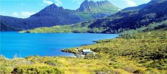 Cradle Mountain Day Tour from Burnie or Devonport Thumbnail 6