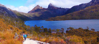 Cradle Mountain Day Tour from Burnie or Devonport Thumbnail 4