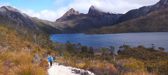 Cradle Mountain Day Tour from Burnie or Devonport Thumbnail 2