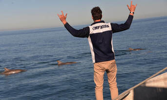 Adelaide Dolphin Watching Cruise Thumbnail 4