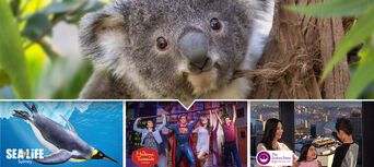 Sydney Attractions Pass - 3 Attractions Thumbnail 1