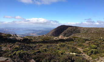 Mount Wellington Morning Tours from Hobart Thumbnail 5