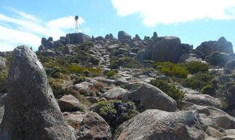 Mount Wellington Morning Tours from Hobart Thumbnail 6