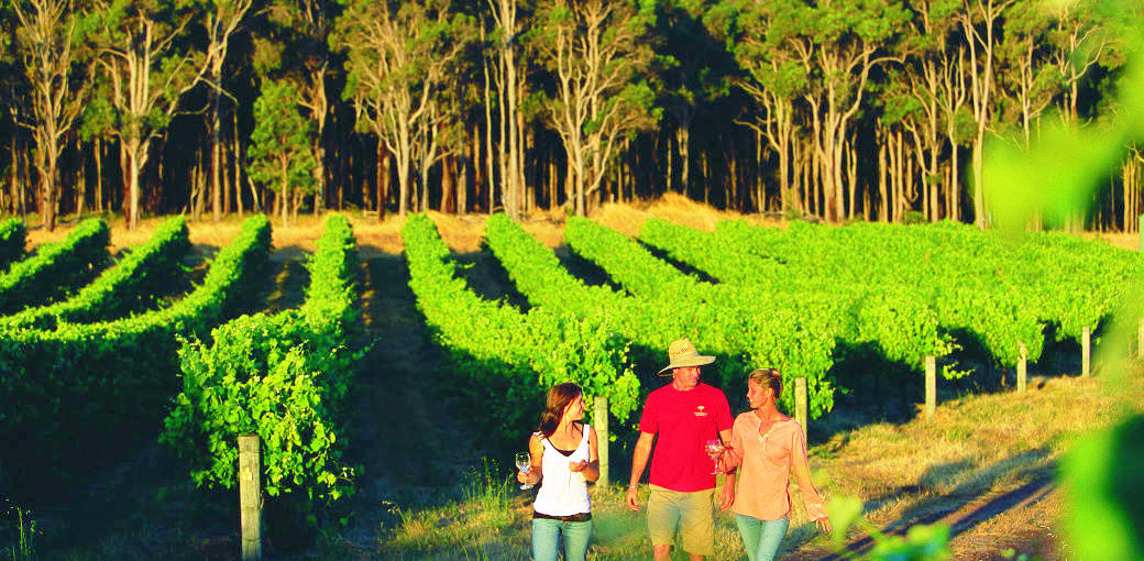Margaret River Tour from Perth