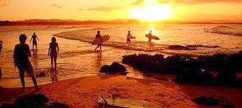 Byron Bay Day Tour from the Gold Coast Thumbnail 4